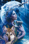 Moonlight Brethren - Fairy & Wolf, Flying Owl - V - Maxi Paper Poster