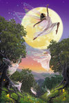 Fairies - Dance of the Moon - V - Maxi Paper Poster