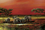 African Style Elephants - Maxi Paper Poster