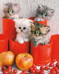 Cherry Cats - Mini Paper Poster