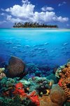 Tropical Scenery I - Maxi Paper Poster