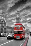 London - Red Bus Westminster - Maxi Paper Poster