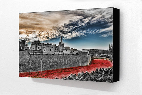 Tower Of London Poppies H Block Mounted Print